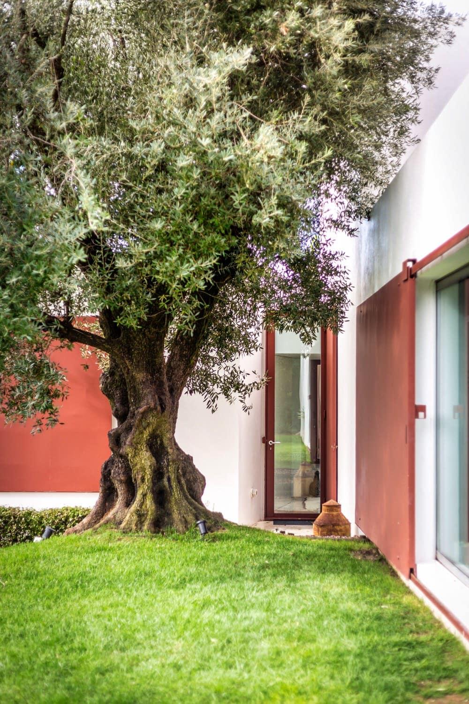 Zalig-Algarve-Casa-Agostos-150-1
