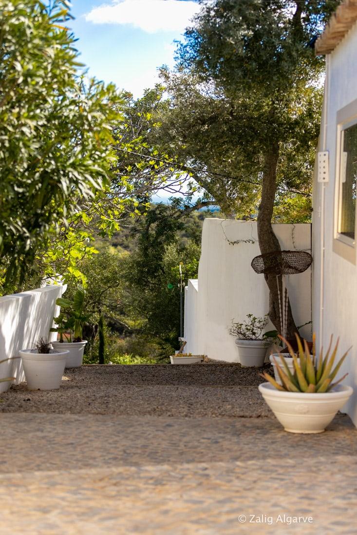 Casa-Alfarrobeira-Zalig-Algarve-62