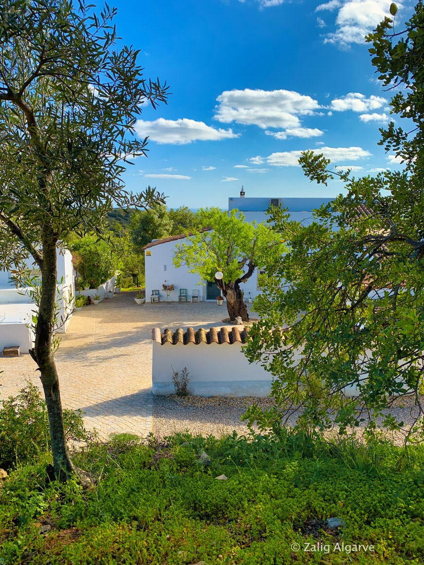 Casa-Alfarrobeira-Zalig-Algarve-67
