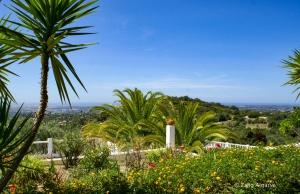 1_Zalig-Algarve-Casa-Bonita-22