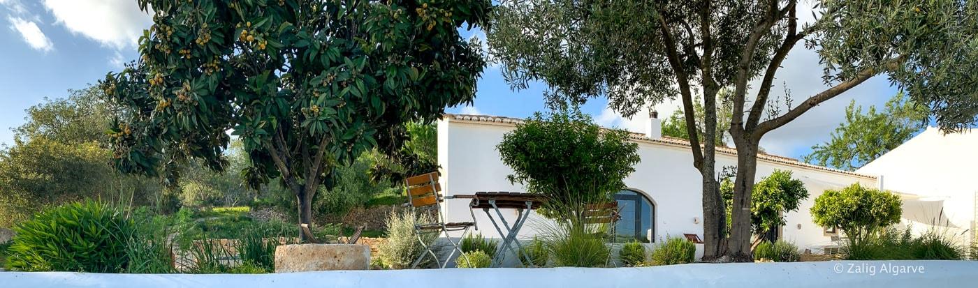 casa-linear-zalig-Algarve-15_1