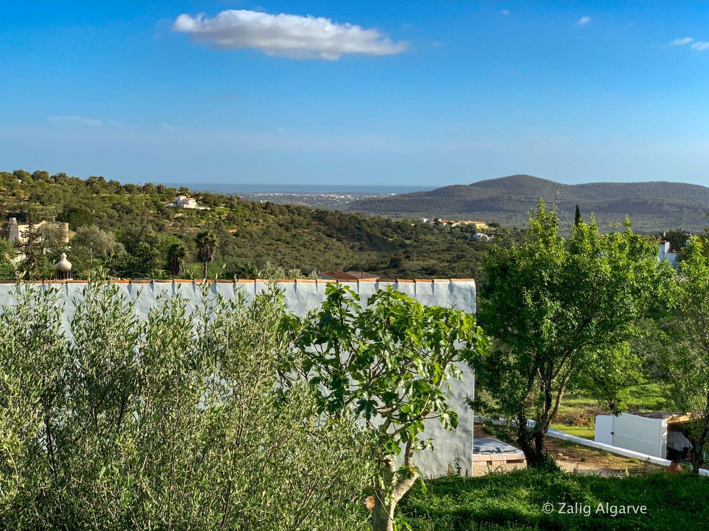 casa-linear-zalig-Algarve-17_1
