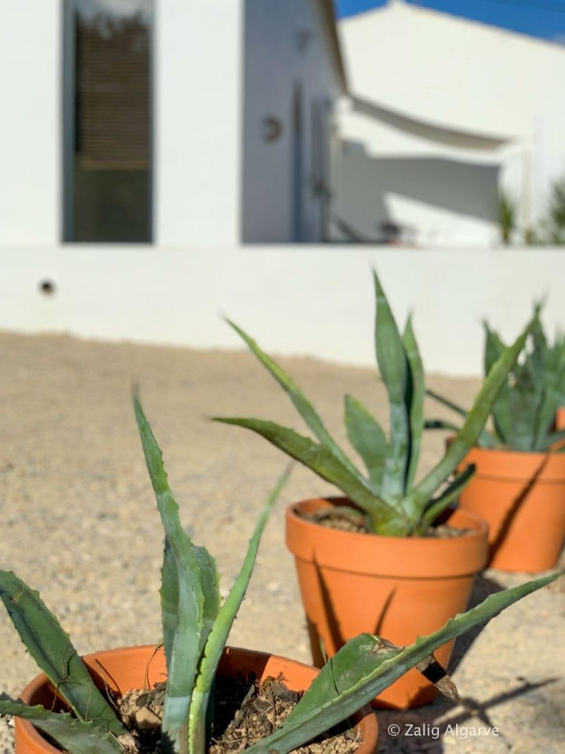 casa-linear-zalig-Algarve-45