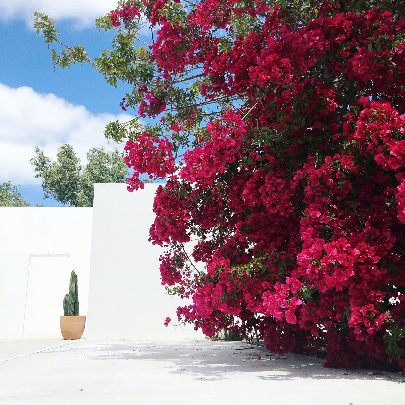 Zalig-Algarve-Casa-Luum-169-1