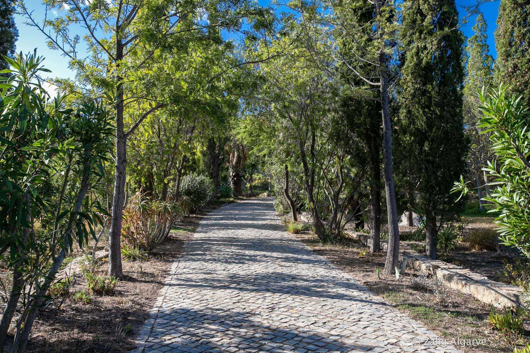 Mil-Arvores-Zalig-Algarve-29_1