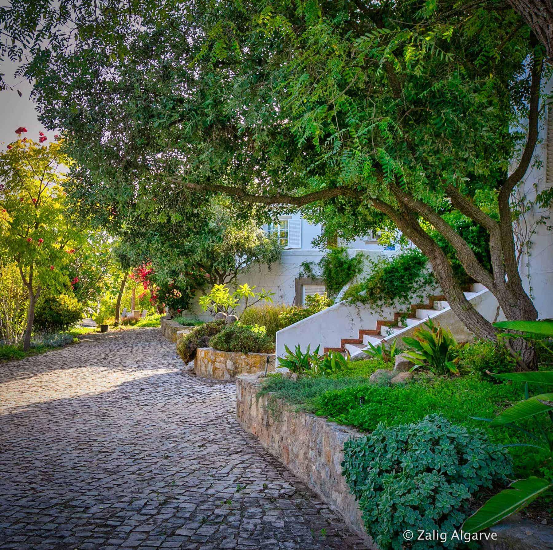 Mil-Arvores-Zalig-Algarve-51_1_1_1