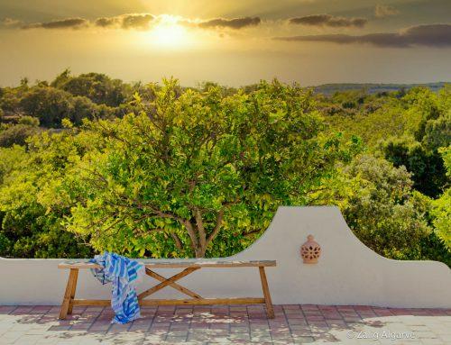 Traumhafte Natur und Ruhe